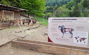 Signalétique et panneaux du zoo Siky Ranch à Crémines
