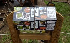 Panneaux didactiques et ludiques : Bornes questions réponses au parc aventure d'Aigle